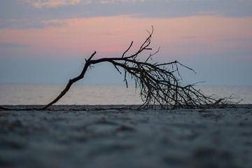Tak op het strand op de brouwersdam van Albert van der Spaan