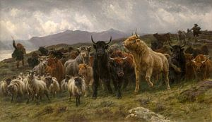 Highland Raid, Rosa Bonheur....