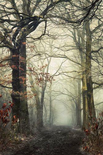 Veins. von Inge Bovens
