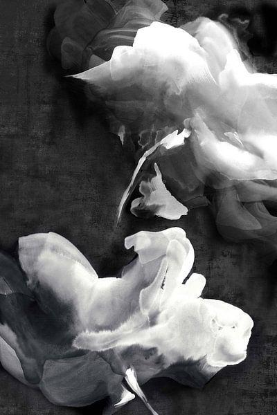 Dunkle Schönheit I, Eva Watts  von PI Creative Art