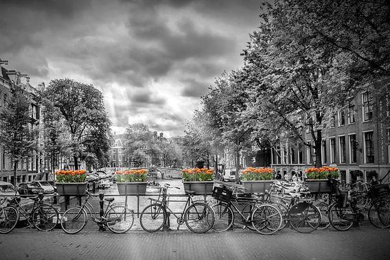 Herengracht / Herrengraben Amsterdam von Melanie Viola