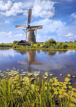 Waterweg met lelies en Windmolen op een zomerse dag, Kinderdijk 2 van Tony Vingerhoets