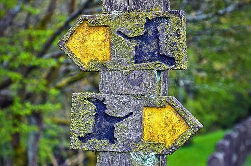 De heksjes weten de weg