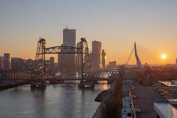 Rotterdam van Daniël van Deelen
