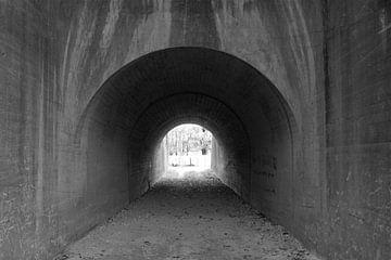 Licht am Ende des Tunnels von Roger Hagelstein