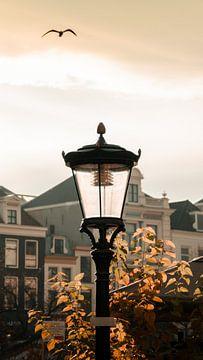Utrecht in zomergloed van Jay Vervoort