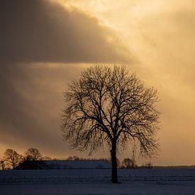 Ondergaande zon bij Nieuwe Statenzijl van Jan Sportel Photography