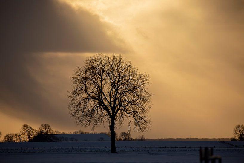 Sonnenuntergang in Nieuwe Statenzijl von Jan Sportel Photography