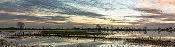 Verdronken land bij Heusden (Nederland, panorama)