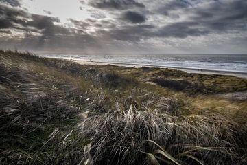 Nederlandse kustlijn van Roel Beurskens