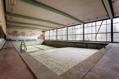 Voormalig Zwembad. van Roman Robroek