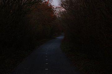 Road to Heaven van Bram Jansen