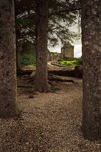 Eilean Donan (Dornie) Castle through the woods