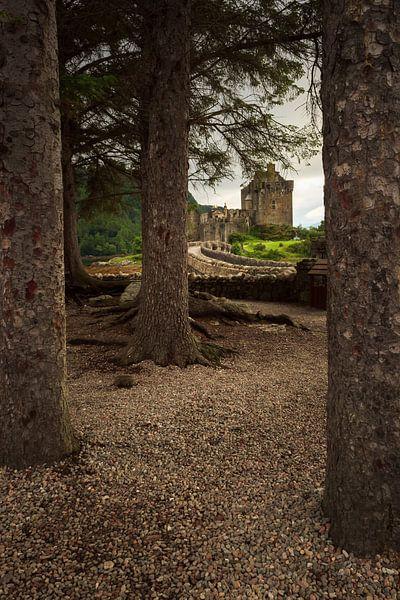Eilean Donan (Dornie) Castle through the woods van Luis Fernando Valdés Villarreal Boullosa
