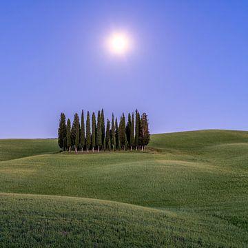 Vollmond in der Toskana I