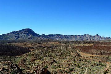 Vulkaan Pico del Teide, een adembenemend nationaal park van kanarischer Inselkrebs Heinz Steiner