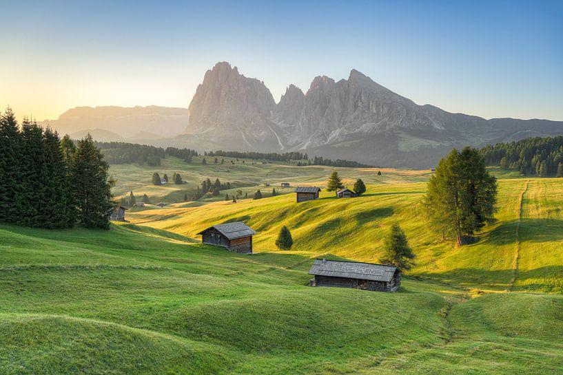 Matin d'été sur l'Alpe di Siusi sur Michael Valjak