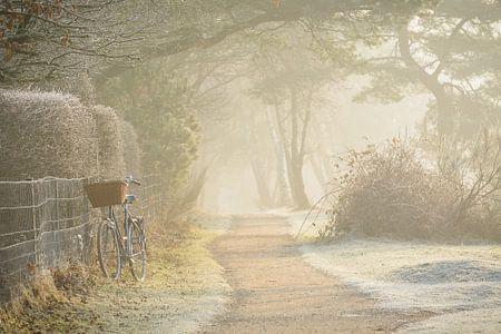 De fiets van een vroege vogel