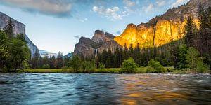Yosemite Valley van