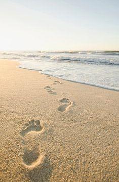 SA11337353 Fußabdrücke zum Meer von BeeldigBeeld Food & Lifestyle