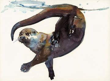 Otterstudie van Mark Adlington