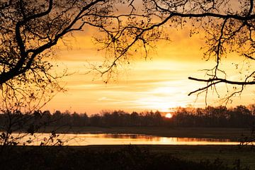 Goldener Sonnenaufgang von Diana Kors