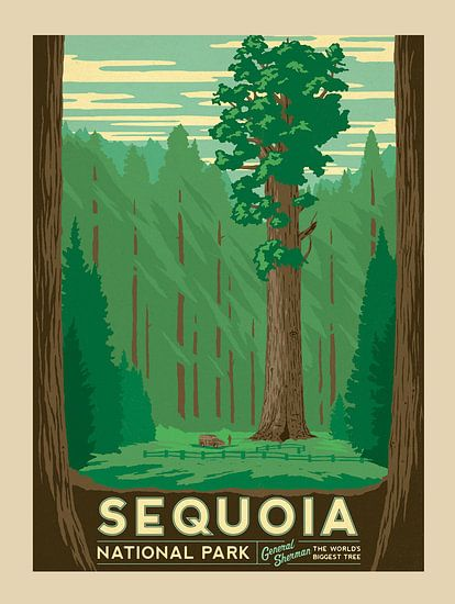 Oude poster van Sequoia National Park