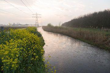 De ochtendhemel weerspiegeld in de Runnerburgersloot van Marijke van Eijkeren