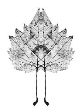 Symmetrisch plantenblad van Cor Ritmeester