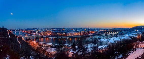 Panorama vanuit het Letna Park van Roy Poots