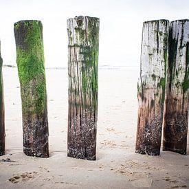 5 op een rij van Marco van den Arend