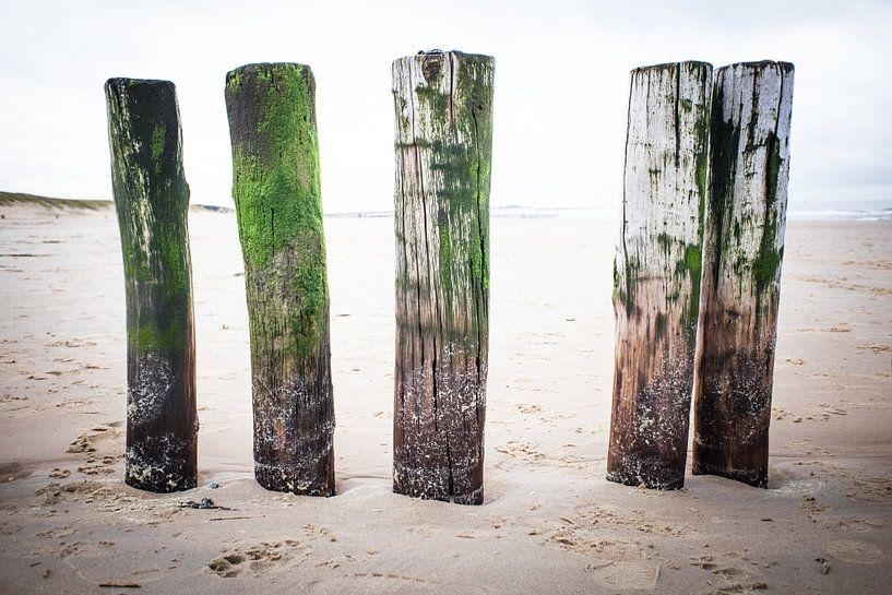 Strand van Marco van den Arend