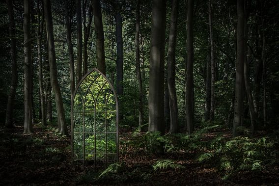 The Green Exit van Cynthia van der Brugge