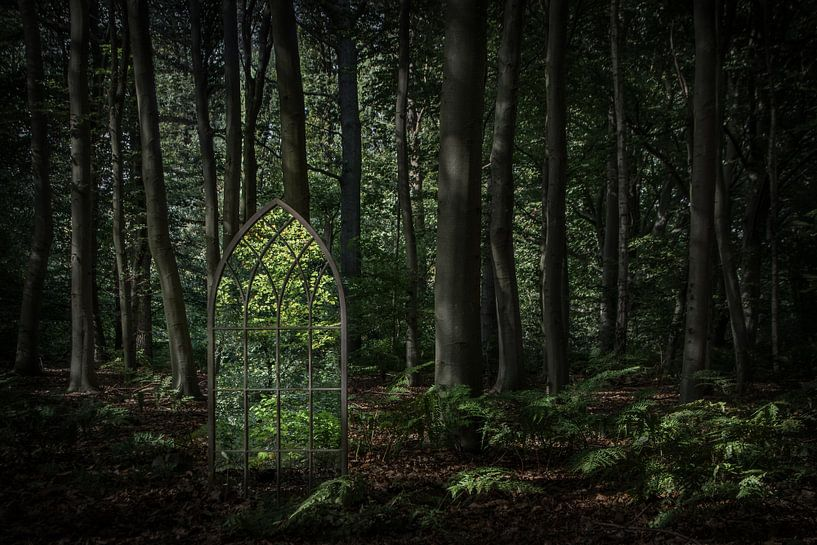 The Light on the Other Side van Cynthia van der Brugge