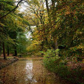 Een waterpartij op een landgoed in de herfst van Gerard de Zwaan