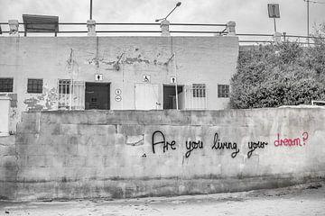 Are you living your dream? von Frank Noordanus