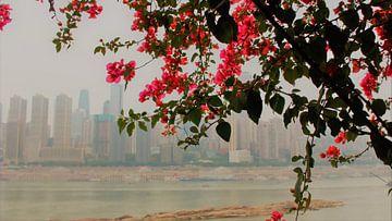 Poésie du fleuve Yangtze 2