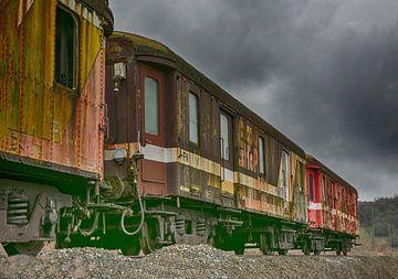 Verlaten treinstel von Michelle Peeters