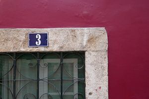 Lissabon van Clementine aan de Stegge