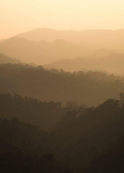 Zonsondergang over de jungle van Gilles Bodson
