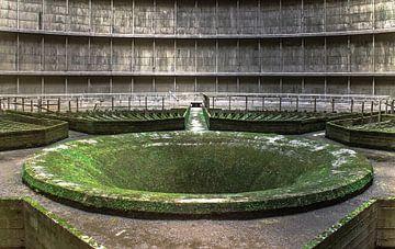 Das grüne Loch von Olivier Van Cauwelaert