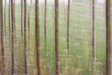Abstract landschap van Lucia Leemans