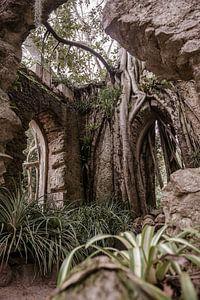 Overwoekerde ruïne in Portugal