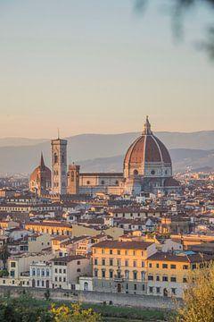 De dom in Florence, Italië van Bianca Kramer