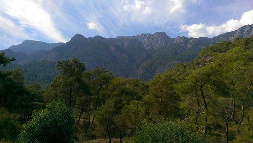 Groene bergen van Martijn  Korte