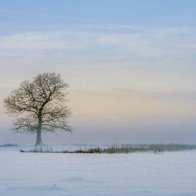 Winterlandschap met boom van Marga Vroom