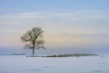 Winterlandschap met boom von Marga Vroom