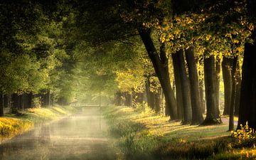 Lovely Day van Kees van Dongen