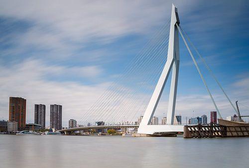 De Erasmusbrug van Rotterdam van