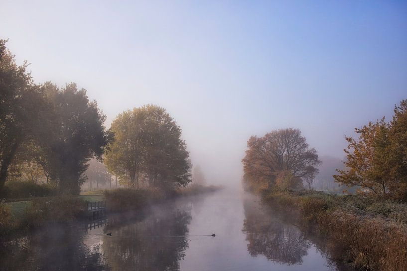 Ochtendnevel in de herfst van Babs Boelens